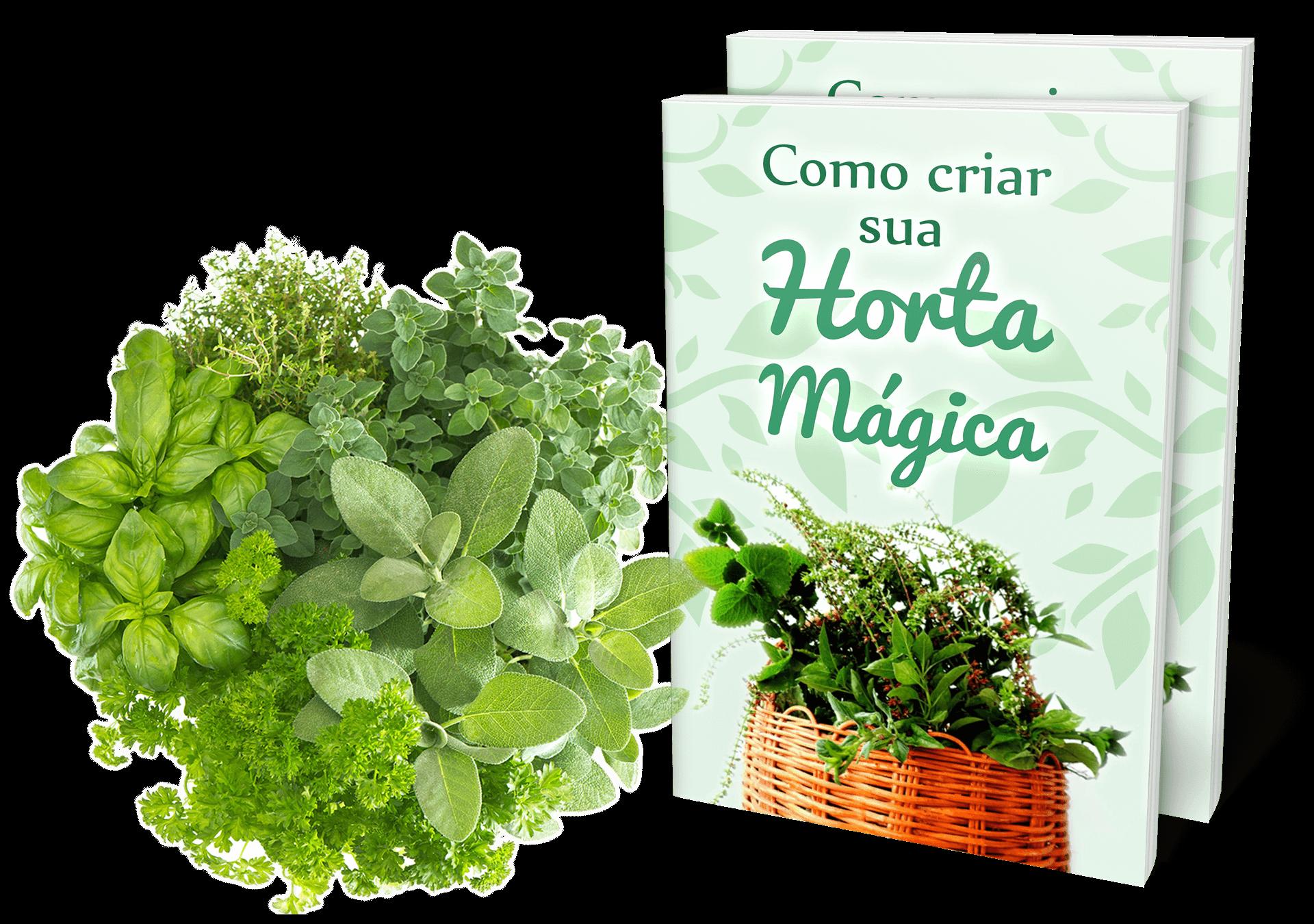 FORM: Horta Mágica